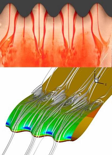 tubercle hydrofoil fluid dynamics testing