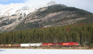 A CP Rail train moves grain near the Canadian Rockies. PHOTO CP