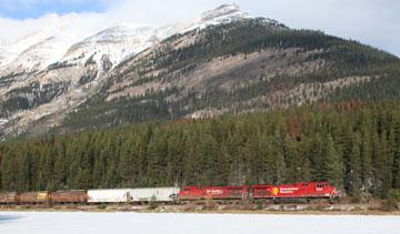 A CP Rail train moves grain near the Canadian Rockies. PHOTO CP