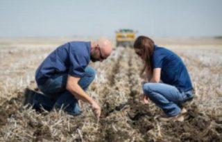 Crop researchers at Richardson's 444-acre Bennett Farm, outside Regina, Sask. PHOTO: Richardson