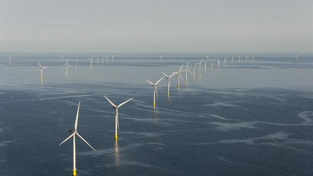 The company will build a pair of wind farms off the Netherlands coast, each with a capacity of 350 megawatts. PHOTO: Dong Energy