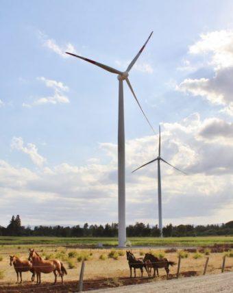 PHOTO: Mainstream Renewable Power