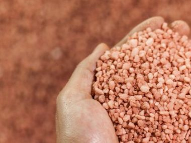 The two Canadian fertilizer companies already have close ties, making up part of North American potash exporting firm Canpotex. PHOTO: Canpotex